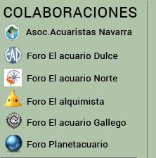 Colaboraciones Acuario Plantado