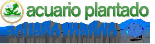 Acuario Plantado | Acuario Marino